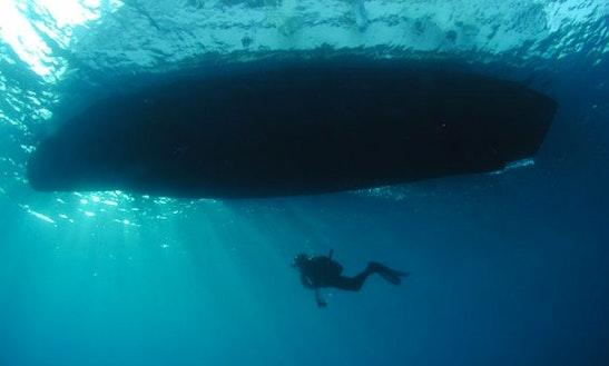 Diving Trips In Adrasan Belediyesi
