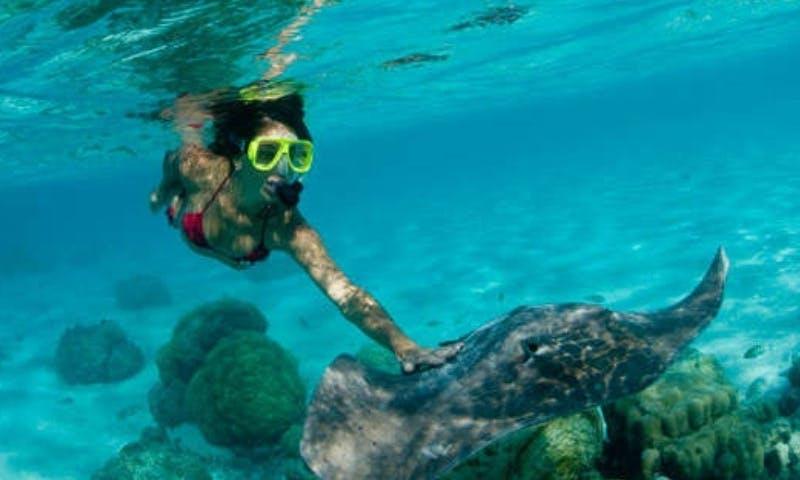 Fantastic Snorkeling Tour in Kuta Selatan, Indonesia