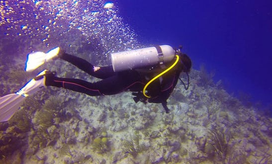Diving Courses In Traverse City