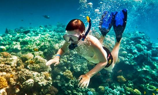 Snorkeling Tours In Kubu