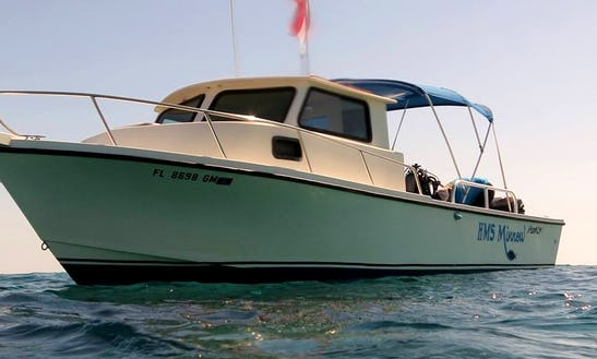 Boat Diving Trips And Courses In Key Largo, Florida