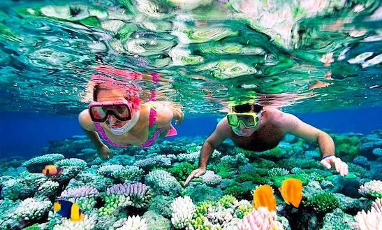 Snorkeling Tours In Blahbatuh