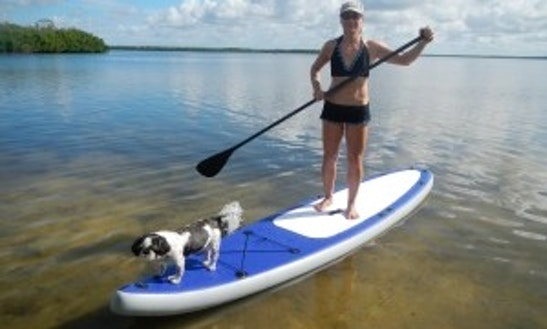 Paddleboard In Bonita Springs
