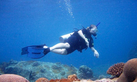 Diving Trips In Mersing
