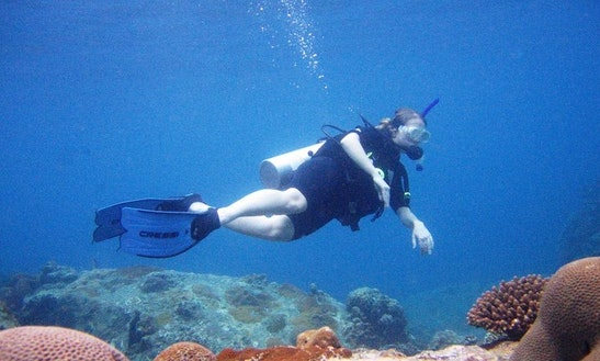 Diving Trips In Mersing