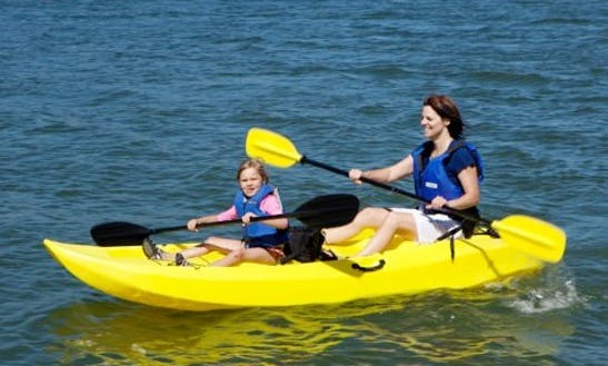 Discover The Assateague Island With Tandem Kayaks In Berlin, Maryland!
