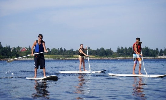Stand Up Paddle Rental In Saint George