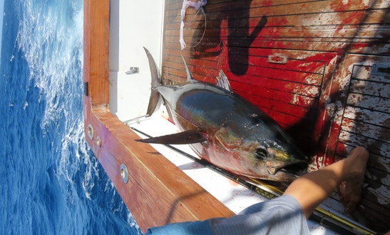 Deep Sea Fishing Charter In Virginia Beach