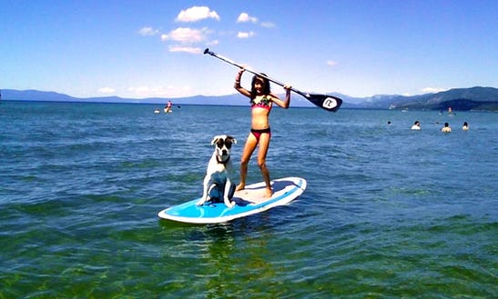 Stand Up Paddleboard Rental In Central Okanagan H, British Columbia
