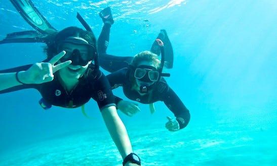 Snorkeling In Lord Howe Island