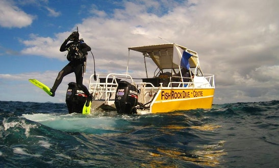 Diving Trips & Padi Courses In South West Rocks