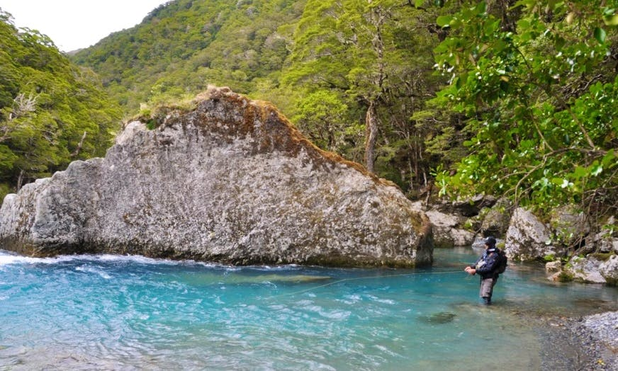 Guided Fly Fishing Trips In Queenstown
