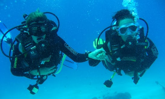 Boat Diving Trips In Falmouth - Uk