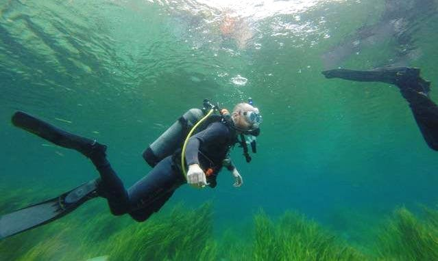 Diving Courses in Charleston
