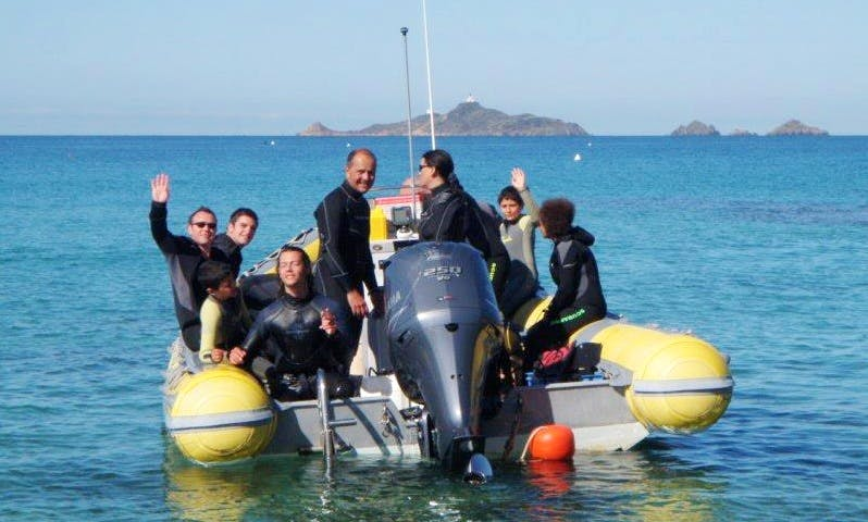 Discover the underwater wonders of Ajaccio, France