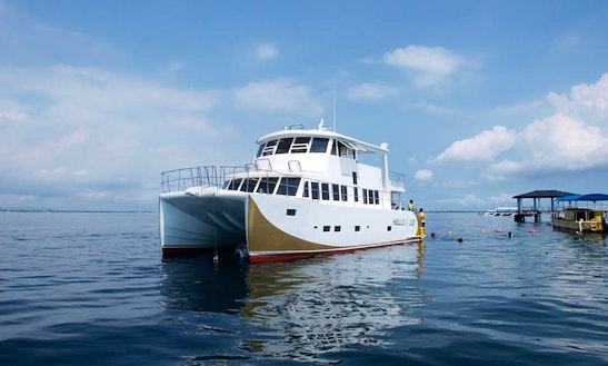 A Fun Excursion For The Whole Family In Lapu-lapu City On This Power Cat