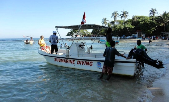 Diving Trips And Courses In Unawatuna
