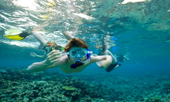 Snorkeling Tours In Weligama