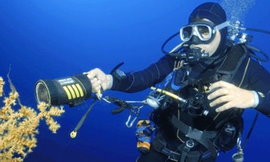 Diving Trips In Ustica, Italy