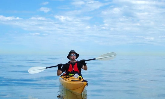 Kayak Tour And Lessons In Hythe