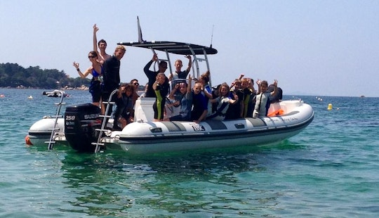 Go For Exciting Dive Trips In The Gulf Of Ajaccio In Corsica, France