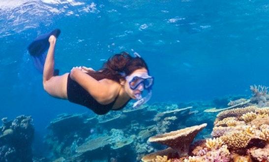 Snorkeling Trips In Kalpitiya