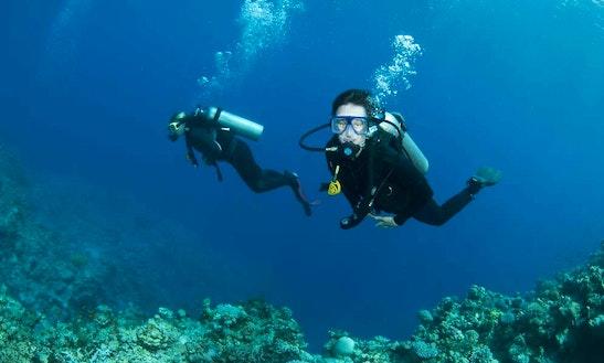 Scuba Diving In Falmouth - Uk