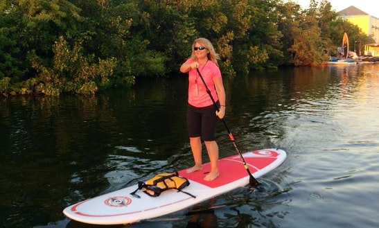 Paddleboard Lesson And Rentals In Bonita Springs