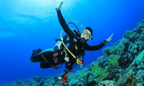 Scuba Diving Courses In Babylon
