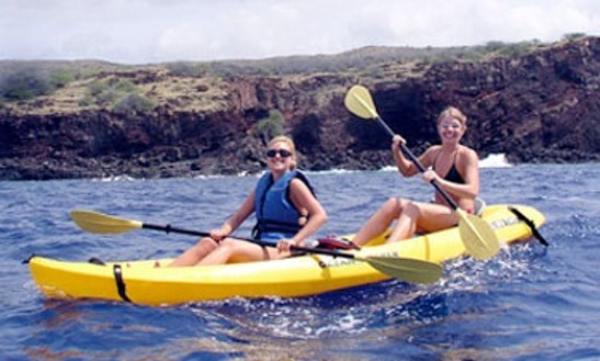 Kayak Tour In Kihei