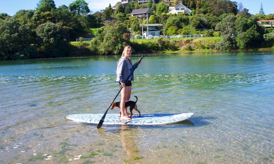 Exciting Paddleboarding in Tairua, Waikato
