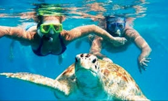 Snorkeling In Talpe
