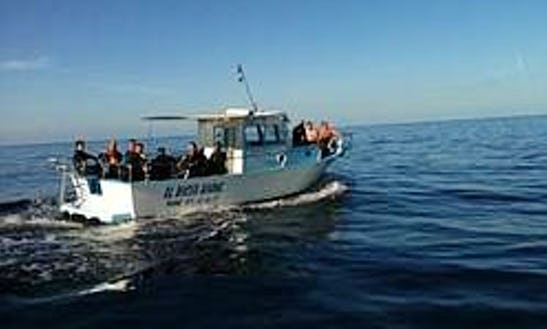 Enhance Your Diving Skills With Our Highly Qualified Dive Instructor In Port D'andratx, Spain