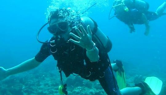 Scuba Diving In Denpasar Timur