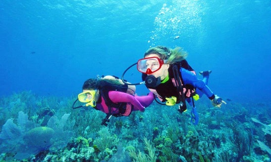 Diving Trips & Courses In Hong Kong