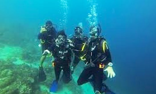 Exciting & Exhilarating Diving Adventure In Lapu-lapu City, Philippines