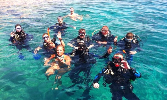 Daily Diving Trips In Jeddah
