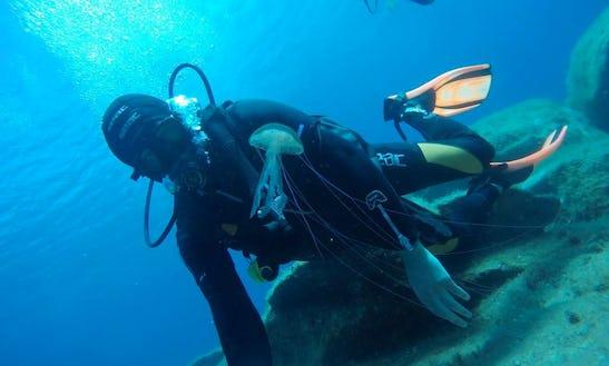 Scuba Lessons In Palau
