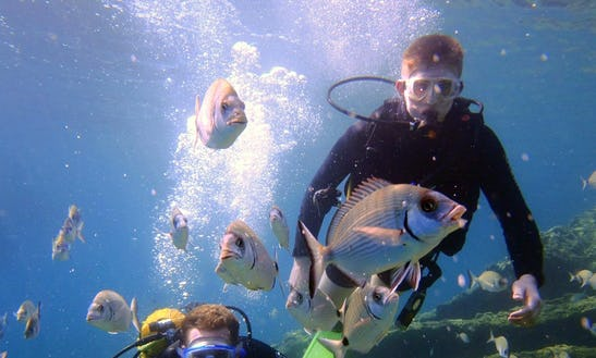 Diving In  Muğla