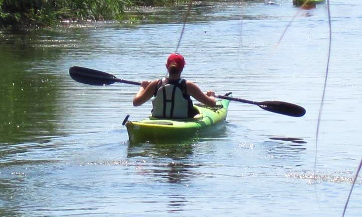 Rent a Single Kayak to Explore the Sant Carles de la Ràpita