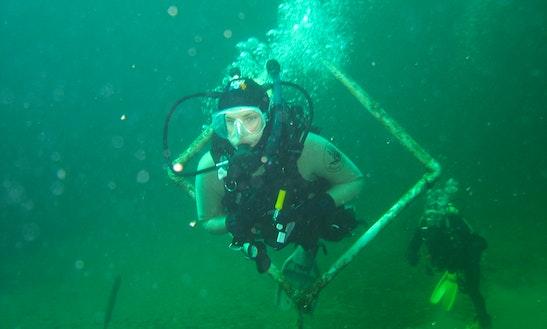 Diving In Carlsbad
