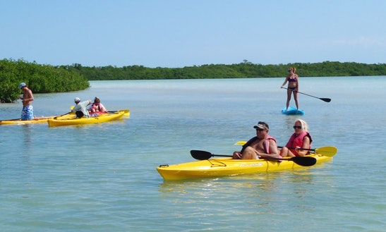 Double Kayak Hourly Rental In Islamorada, Florida