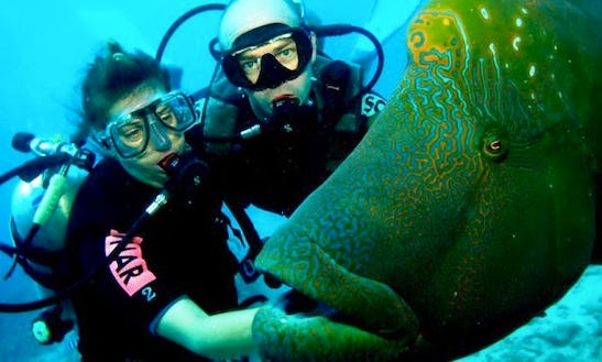 Diving Trips And Courses In Gdańsk