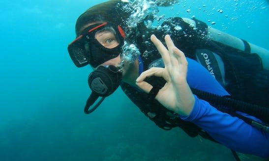 Diving In Devbag