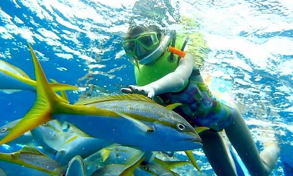 Snorkeling in Port Blair