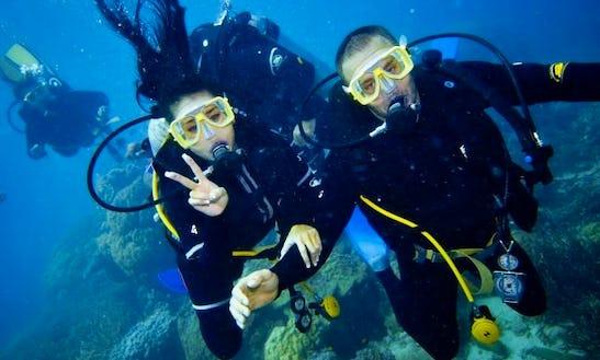 Diving In Zhongli District
