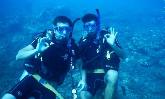 Diving Trips & Courses In Matara