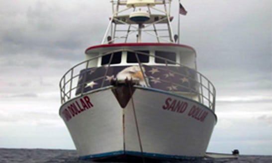Dive Boat: Sand Dollar In San Pedro California