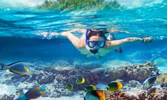 Snorkeling Adventure For Up To 15 People In Tambon Ko Chang, Thailand