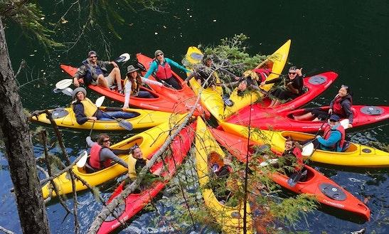 Single Kayak Rental In Hoodsport
